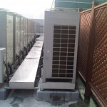 IMG-20120113-01966